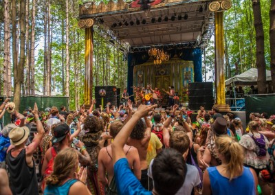 Photo Credit: http://www.electricforestfestival.com/